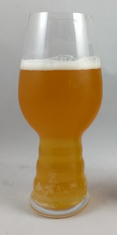 Mango American Kolsch, Clown Shoes.jpg
