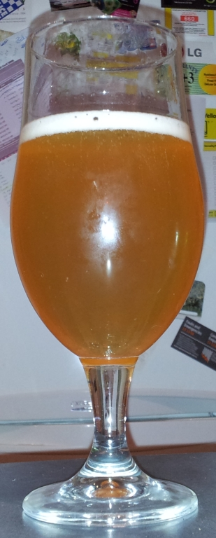 2012 Growers Ale, Endeavour.jpg