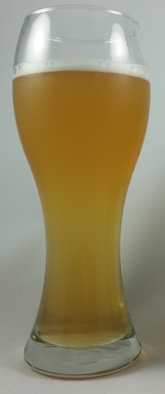 50 50 Ginger Wheat, Ekhidna Wines Microbrewery.jpg