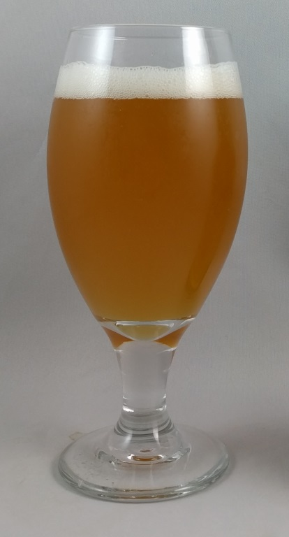 Golden Ale, Grand Ridge.jpg