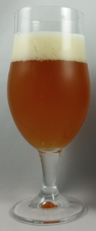 Long Trip Saison, Nomad Brewing Co..jpg