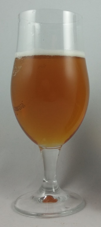 Southern Pale Ale, Monteith.jpg