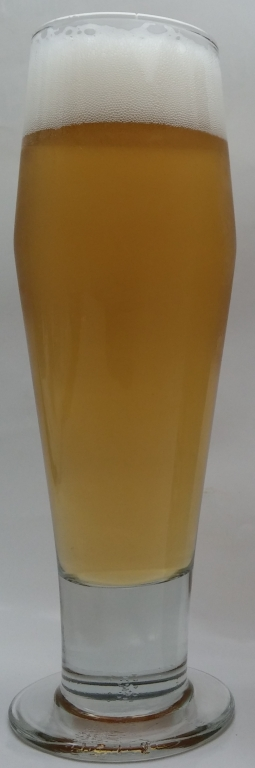 Hammer 'n' Tongs Draught, Freeman & Sons Brewing.jpg